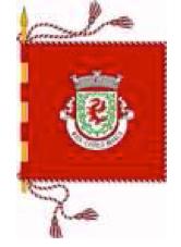 bandeira-mata